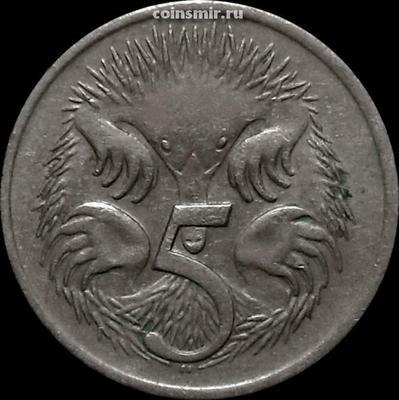 5 центов 1973 Австралия. Ехидна.