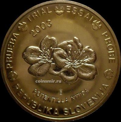 50 евроцентов 2003 Словения. Европроба. Specimen. Лапчатка блестящая.