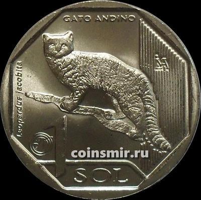 1 соль 2019 Перу. Андская кошка.