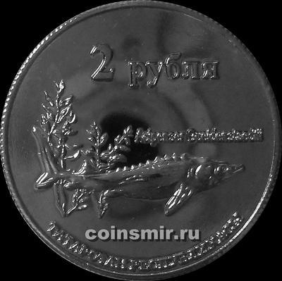 2 рубля 2013 Татарстан. Русский осётр.