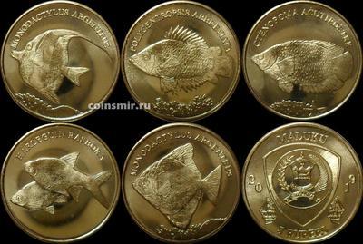 Набор из 5 монет 2019 Малуку. Рыбы.