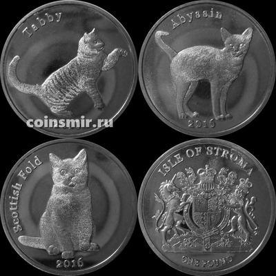 Набор из 3 монет 2016 остров Строма. Домашние кошки.