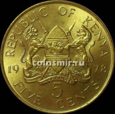 5 центов 1978 Кения.