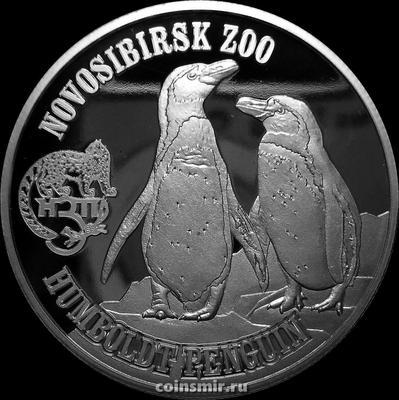 1 доллар 2017 Британские Виргинские острова. Новосибирский зоопарк. Пингвины Гумбольдта.