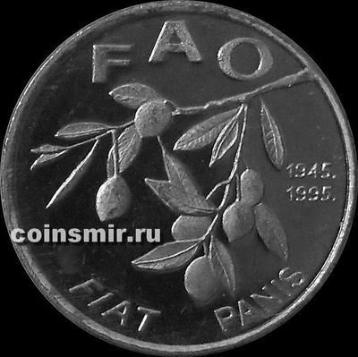 20 лип 1995 Хорватия. Маслины. ФАО.