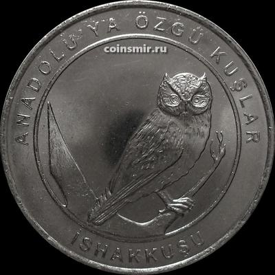 1 куруш 2018 Турция. Птицы Анатолии — Сплюшка.