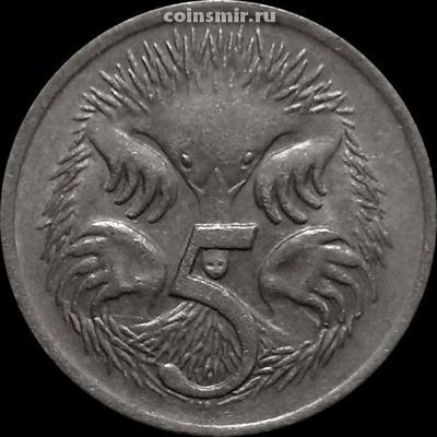 5 центов 1975 Австралия. Ехидна.