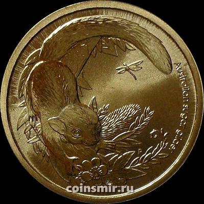 1 доллар 2011 Австралия. Сахарная сумчатая летяга.
