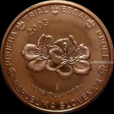 5 евроцентов 2003 Словения. Европроба. Specimen. Лапчатка блестящая.