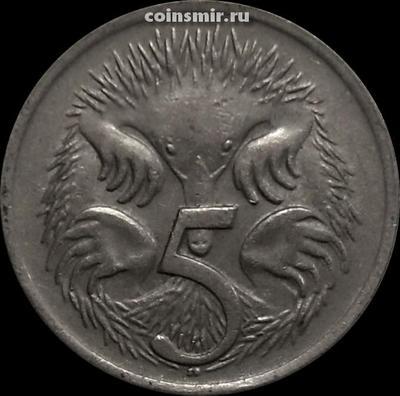 5 центов 1969 Австралия. Ехидна.