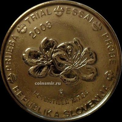 10 евроцентов 2003 Словения. Европроба. Specimen. Лапчатка блестящая.