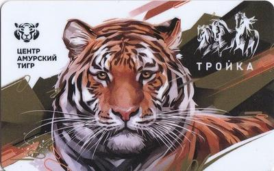 Карта Тройка 2019. Центр Амурский тигр.