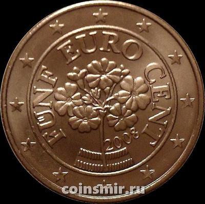 5 евроцентов 2008 Австрия. Альпийская примула.