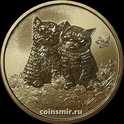 1 доллар 2015 Тувалу. Котята.