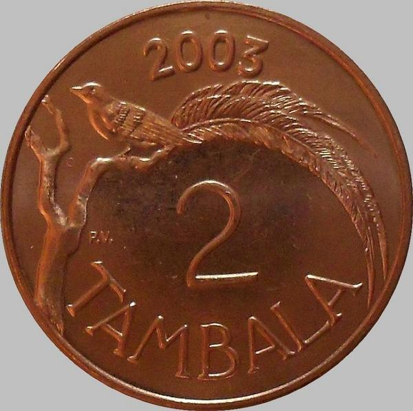 2 тамбала 2003 Малави. Райская птица.