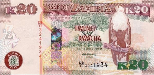 20 квач 2012 Замбия.