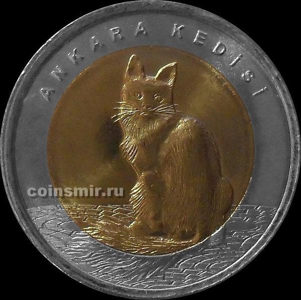 1 лира 2015 Турция. Ангорская кошка.