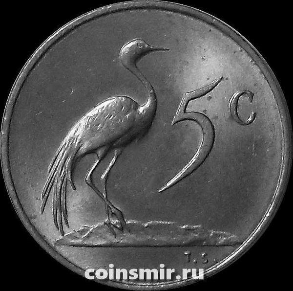 5 центов 1977 Южная Африка.
