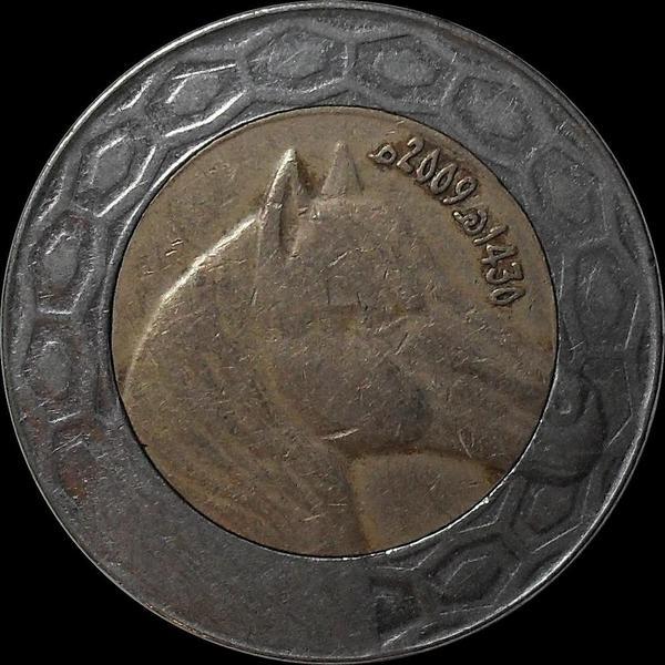100 динар 2009 Алжир. Лошадь.