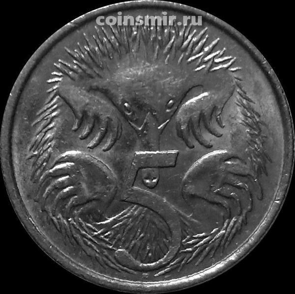 5 центов 2010 Австралия. Ехидна.