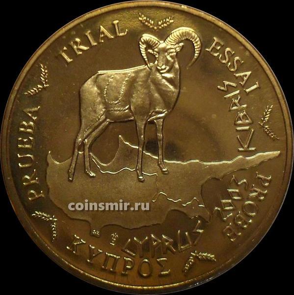 50 евроцентов 2003 Кипр. Европроба. Specimen.