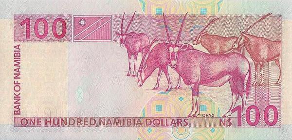100 долларов 2003 Намибия.