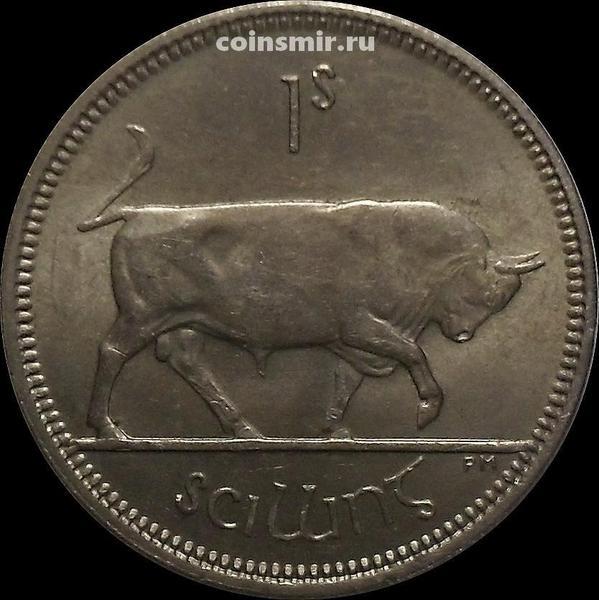 1 шиллинг 1966 Ирландия. Бык.