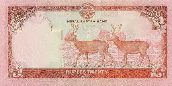20 рупий 2016 Непал.