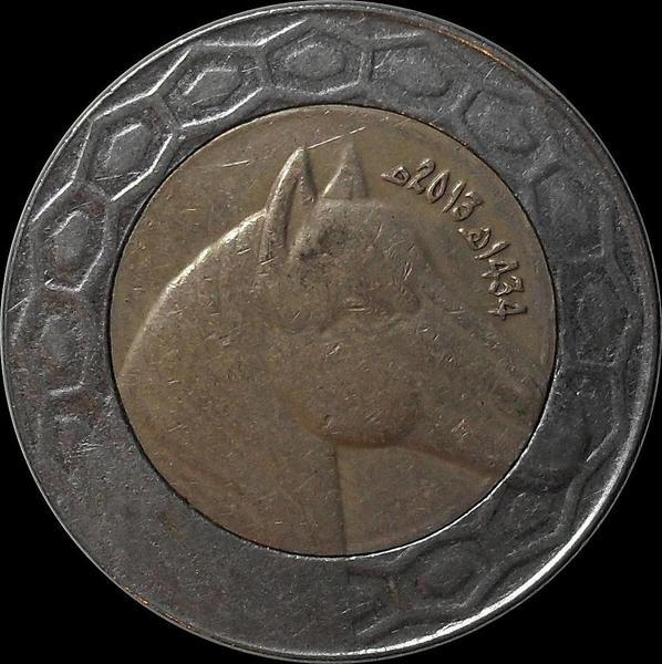100 динар 2013 Алжир. Лошадь.