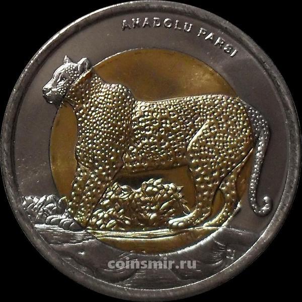 1 лира 2012 Турция. Леопард.