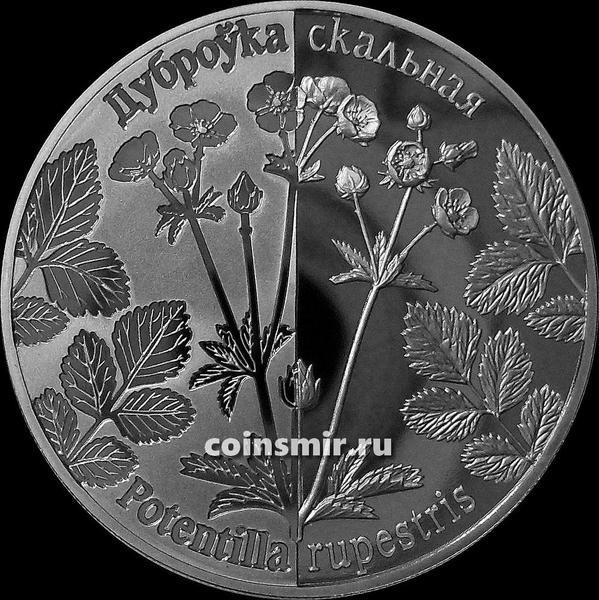 1 рубль 2017 Беларусь. Лапчатка скальная.