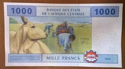Экваториальная Гвинея 1000 франков 2002 год (ЦАР)
