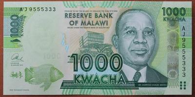 Малави 1000 квача 2013 год