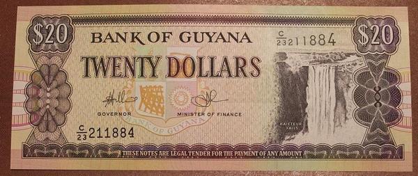 Гайана 20 долларов 1996 год
