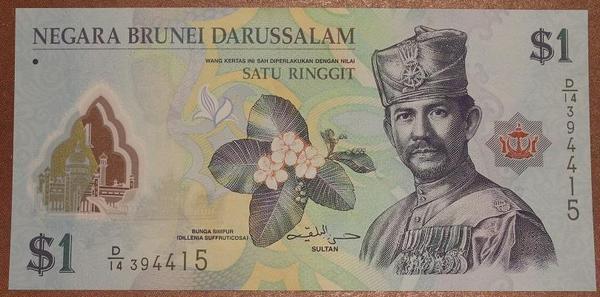 Бруней 1 рингит 2011 год